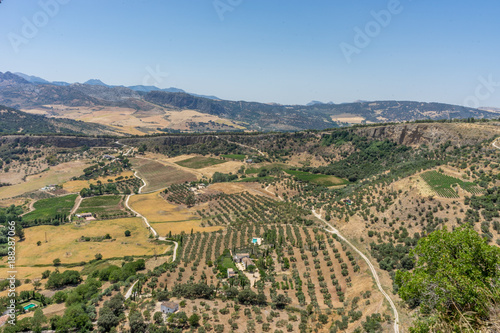 Foto Murales Greenery, Mountains, Farms and Fields on the outskirts of Ronda Spain, Europe on a hot summer day