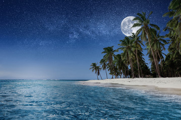 Paradise beach at night. Tropical paradise, white sand, beach, palm trees and clear water