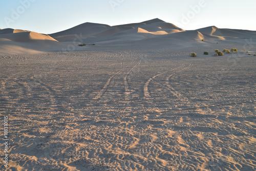 Fotobehang Zalm sand dunes at Imperial Sand Dunes Recreational Area, California