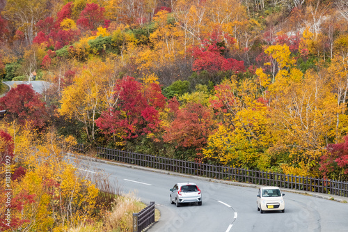 Papiers peints Automne Hakkoda gold line at Aomori prefecture in autumn