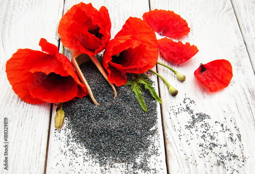 Poppy seeds and flowers - 188329819