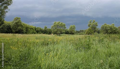 В поле перед грозой