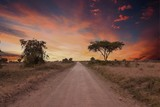 road in the African savanna