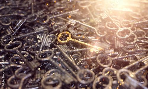 3d goldenen Schlüssel finden, wie die Nadel im Heuhaufen