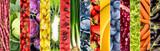 Meyve ve sebze kolajı