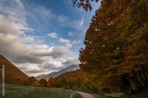 Foto Murales Monti del Parco Nazionale d'Abruzzo