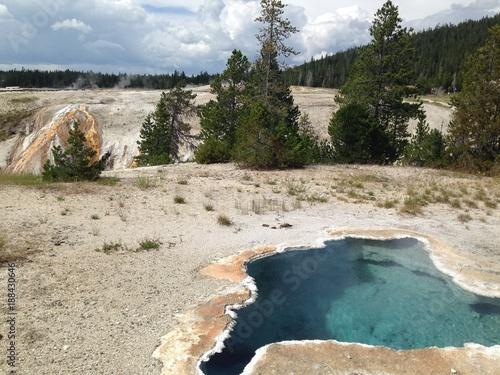Foto Murales Yellowstone