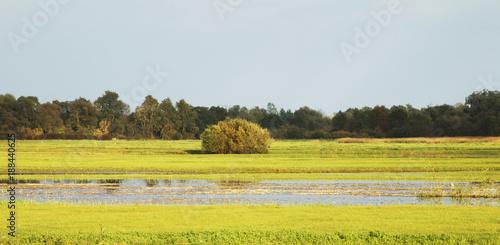 Papiers peints Automne Landscape near Turka. Poland