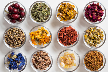 Selection of dried herbs on a white background, top view