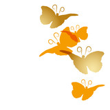 Schmetterlinge gold orange