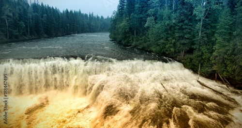 Foto Murales Great river in forest