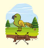 Beautiful bird cartoon in forest icon vector illustration graphic design