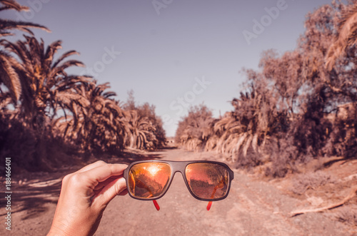 Fotobehang Zalm sunglasses and alley of palms