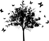blossoming black tree and butterflies isolated on white - 188493649