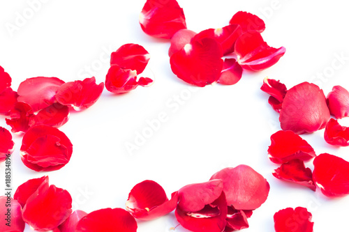 Foto Murales Valentines Day Made of Red rose petals Isolated on White Background.