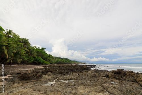 Foto Murales Rocky beach and trees montezuma Costa Rica