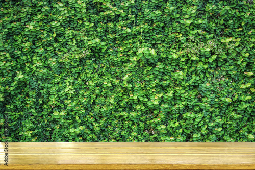 tabletop with green plant nature background - 188559654