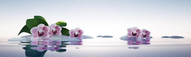 Orchideen mit Steinen im See © psdesign1