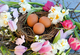 Happy Easter: nest with Easter eggs, feathers, tulips and daffodils:)