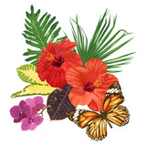 Tropical flowers and leaves, hibiscus, orchid and butterfly.