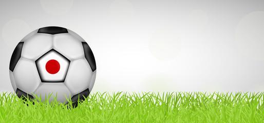 Fußballwiese - Fußball Japan