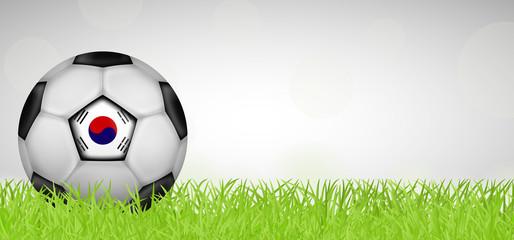 Fußballwiese - Fußball Südkorea