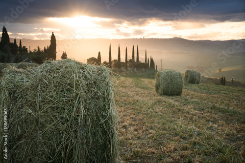 Rural landscape with rolls of hay, Tuscany, Italy - 188699063