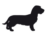 Dachshund - Vector black dog silhouette isolated