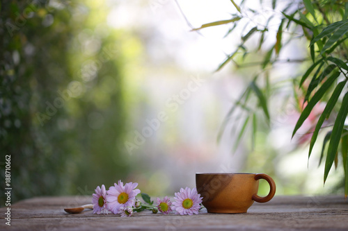 Brown cup and pink Zinnia flower at outdoor