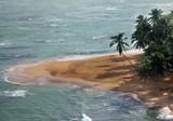 Saona island beach - 188720677