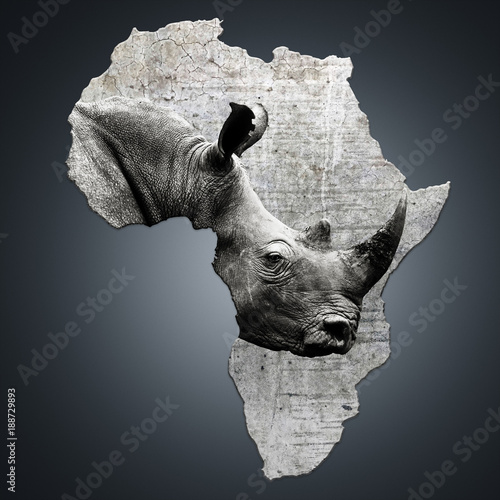 Fotobehang Neushoorn The continent of Africa with a rhino. Creating awareness on poaching. Ceratotherium simum