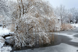 White winter landscape with fresh snow on frozen pond and trees on the lakeside
