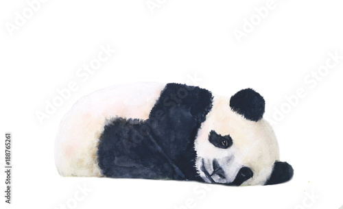 watercolor panda sleep isolated on white background © atichat
