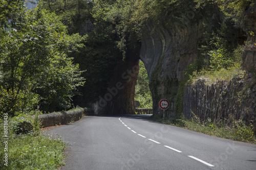 Papiers peints Route dans la forêt Gorges du Tarn
