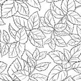 melissa seamless pattern - 188801239