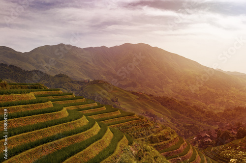 Canvas Rijstvelden Beautiful view of the Longsheng Rice Terraces near the of the Dazhai village in the province of Guangxi, in China; Concept for travel in China and beutiful and serene landscape