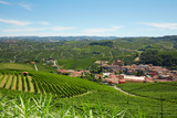 Barolo medieval town in Piedmont with vineyards, Langhe hills view in a sunny day, northern Italy