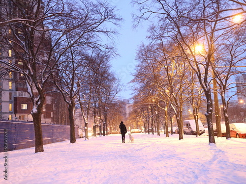 Fotobehang Lichtroze snow-covered pedestrian path in the park