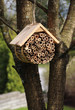 Insect hotel hanging in garden tree