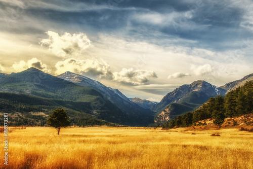 Staande foto Beige Mountain Meadow
