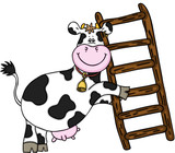 Happy cow with wooden ladder  - 188982007