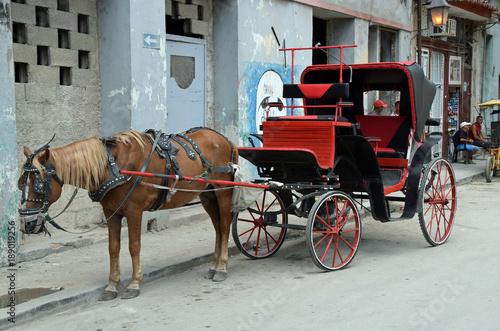 Foto op Canvas Havana Pferdefuhrwerk auf Kuba