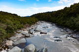 New Zealand Fox Glacier river landscape with rainforest