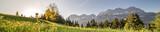 eine Pusteblume im Panorama mit den Bergen im Hintergrund - 189046670