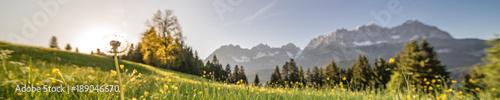 Foto Murales eine Pusteblume im Panorama mit den Bergen im Hintergrund
