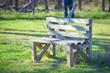 Bench in Cedar Hill State Park. Located in Dallas, Texas, USA.