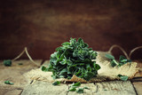 Fresh green oregano or Origanum vulgare in a beam, vintage wood background, selective focus - 189126835