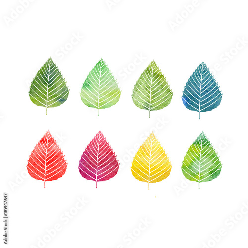 watercolor set of tree leaves - 189147647