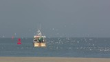 Chaluttier à la pêche en baie de Somme - 189149002