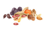 Nuts and dried fruits watercolor border - 189150453